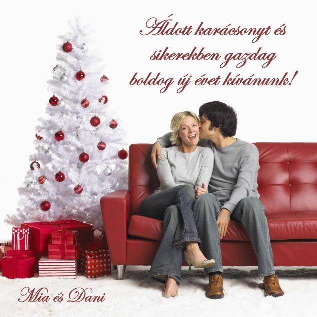 Kellemes karácsonyi ünnepeket és boldog új évet kívánunk!
