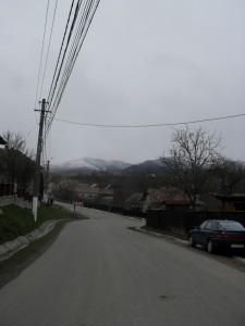 bartok_utazas3 (1)